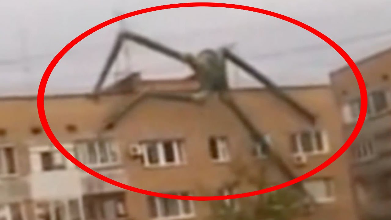 5 scariest unknown creatures caught on camera spotted in real life