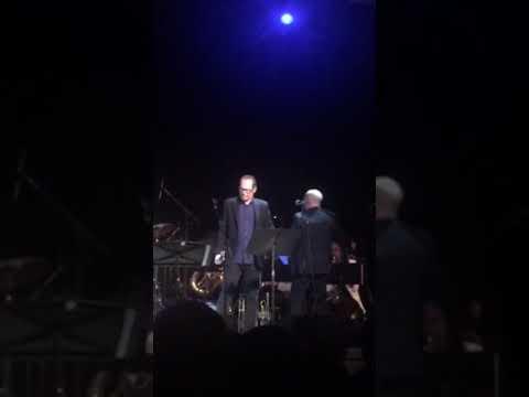 Steve Buscemi Sings Bob Dylan's John Birch Blues