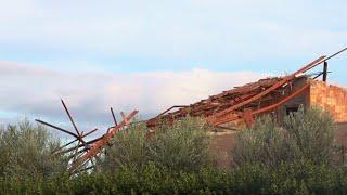 Maltempo, tromba d'aria a Policoro: alberi caduti e tetti divelti