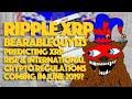 Ripple XRP: BearableGuy123 Predicting XRP Rise & International Crypto Regulations Coming In June?