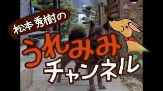 番組提供:ペットライン株式会社(http://www.petline.co.jp/) 笑いあ...