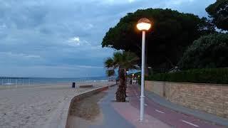 Камбрильс - урок ботаники: пляж, море, пальмы.