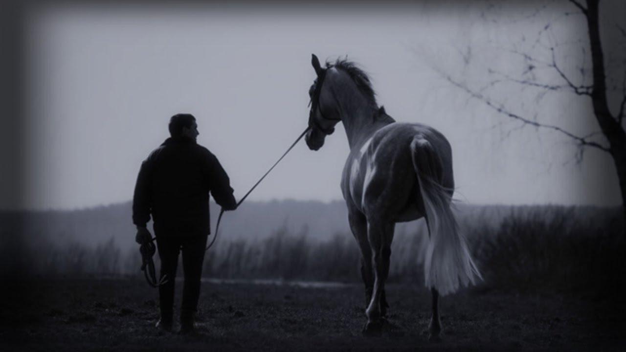 Картинки по запросу Пелагея и Дарья Мороз - Выйду ночью в поле с конём