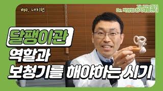 #05. 달팽이관 역할과 보청기를 해야하는 시기/내이편…