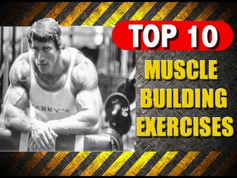 Top 10 Muscle Building Exercises Youtube