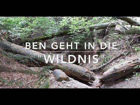 Wildnispfad Exkursion - Verschiedene Sehenswürdigkeiten im Wald (Teil 1 v. 2)