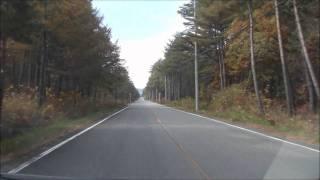 【車載】2011年秋紅葉 群馬県浅間牧場→鬼押出し・浅間園2倍速BGM付