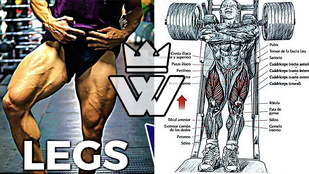 Full LEG Workout | 20 EXERCISES for Strong Legs