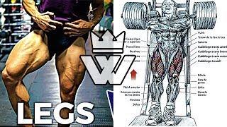 Full LEG Workout | 20 EXERCISES for Strong Legs