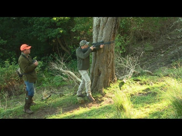 Hunting deer - Field to Fork part 2