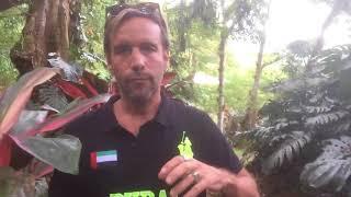 Globale Visionen: Gut und Böse?, Costa Rica