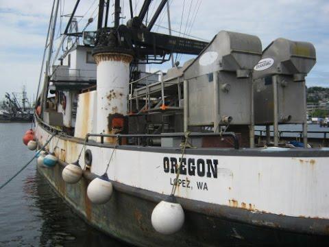 The Salty Dog Boating News Presents  F/V Oregon Alaska Tender Boat