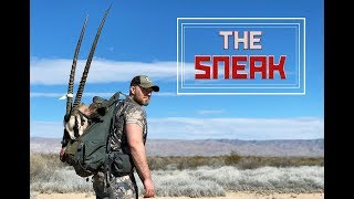 """The Sneak"" A Free Range New Mexico Oryx Adventure"