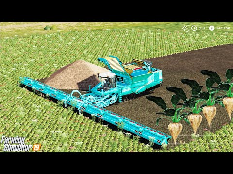 WORLD BIGGEST SUGAR BEET HARVESTER!!😀 AND AMAZING YIELD!!! Farming Simulator 19