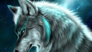 Самые лучшие фото волков