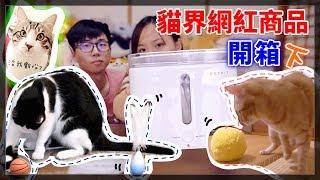 【魚乾】貓界網紅商品開箱!高質感玩具與飲水機...毛球?(下) thumbnail