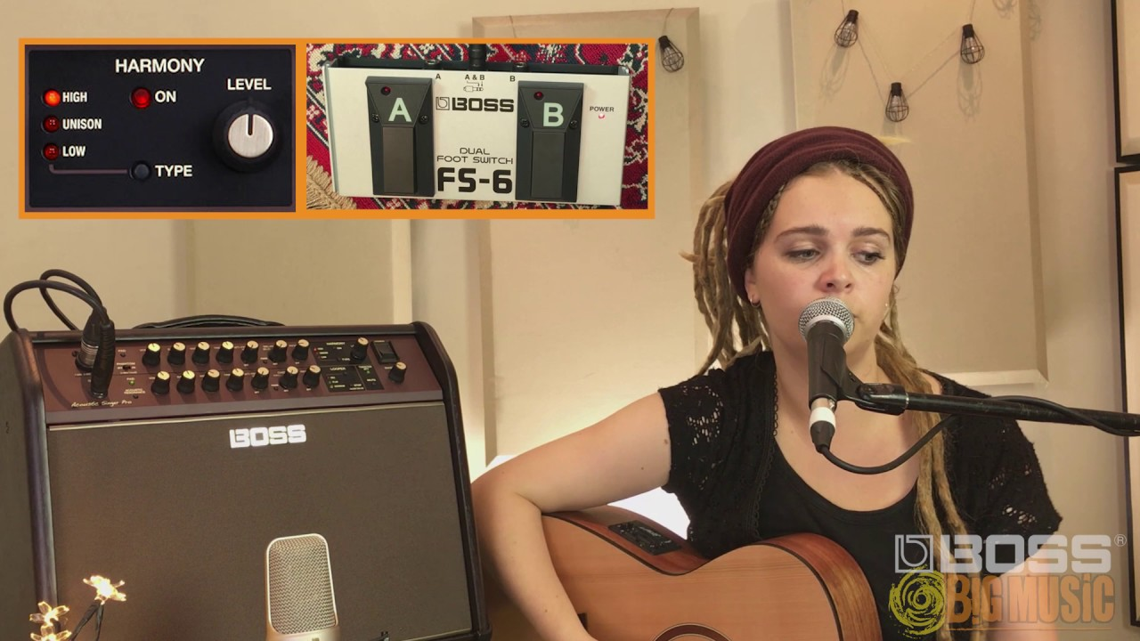 Boss Acoustic Singer Series Amplifier Live Performance