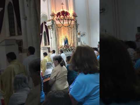 Ladainha de Nossa Senhora dos Remédios - Picos Piauí