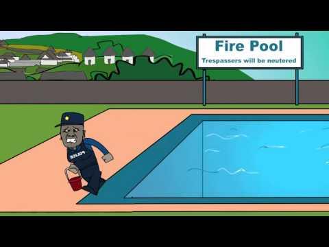Pimples: Bring me my Nkandla swimming pool