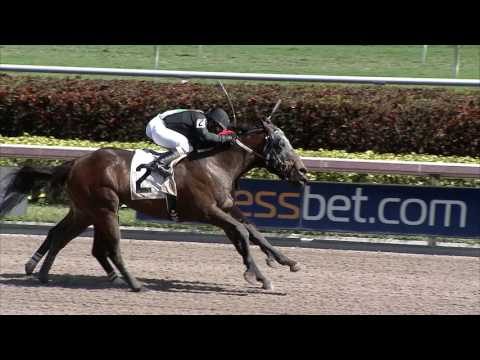 Gulfstream Park Replay Show | February 19, 2017