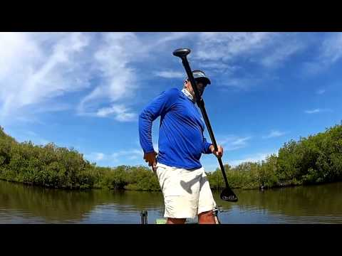 PFDs And The Redfish