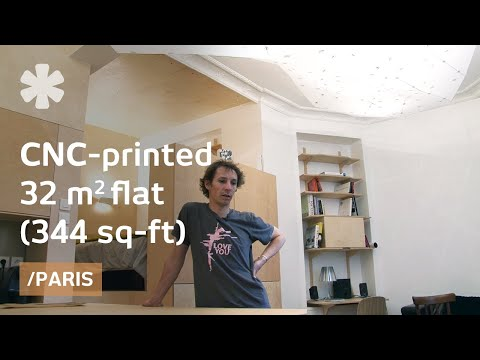 Plywood bedroom hangs as a nest over printed tiny Paris flat