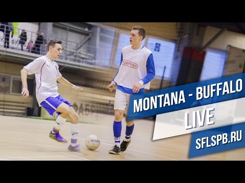 Buffalo - Montana