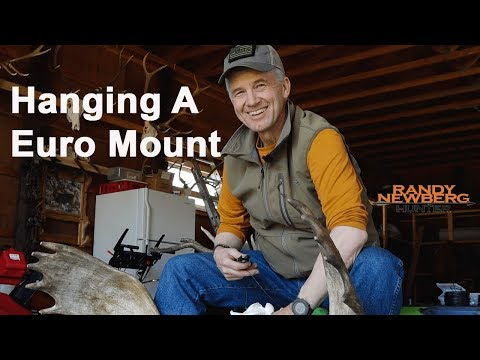 How To Hang A European Mount DIY with Randy Newberg