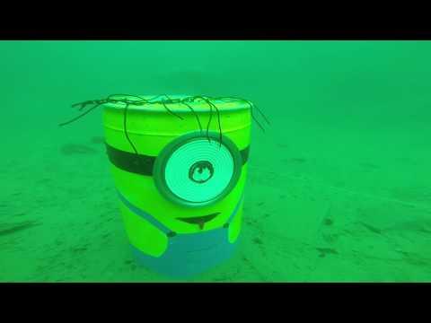 GoPro Hero 3+ Scuba Diving - Flintkote Thetford Mines, Quebec, Canada - Plongé Sous Marine