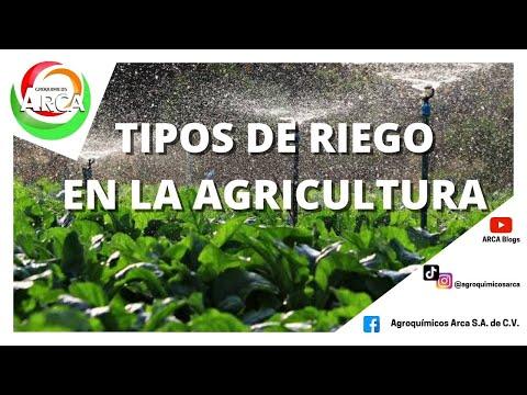 Los tipos de riego en la agricultura thumbnail