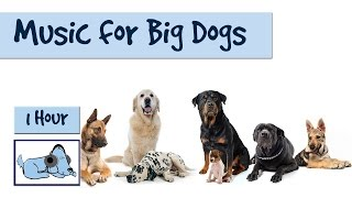 1 Hour of Relaxing Music for Big Dog Breeds. German Shepherd, Retriever, Rottweiler etc.
