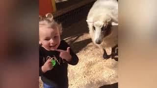 Funny Babies and Animals - Kulgili chaqaloqlar va hayvonlar