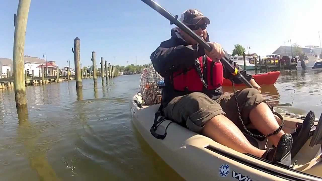 Kayak crabbing in maryland youtube for Md fishing license
