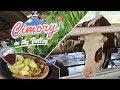 Cimory on The Valley Semarang: Wisata Seru untuk Keluarga