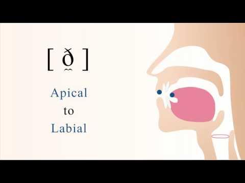 [ ð̼ ] voiced apical labial non sibilant fricative