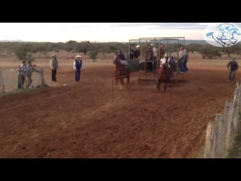 Copia de carrera de caballos El Boomerang VS El Boludo