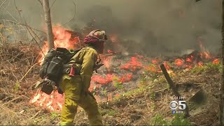Firefighters Make A Stand Against Bear Fire In Santa Cruz Mountains