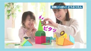 ピタゴラスシリーズ紹介動画~1歳から小学生まで遊べる磁石のブロック~
