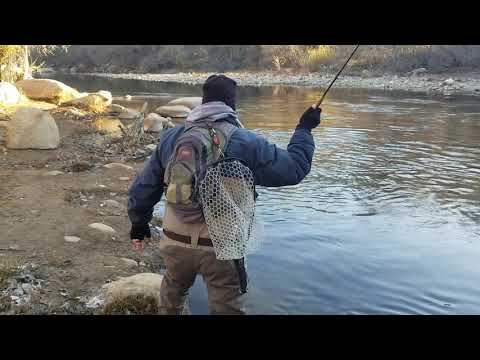 Kern  River Fly Fishing Report January 15, 2020