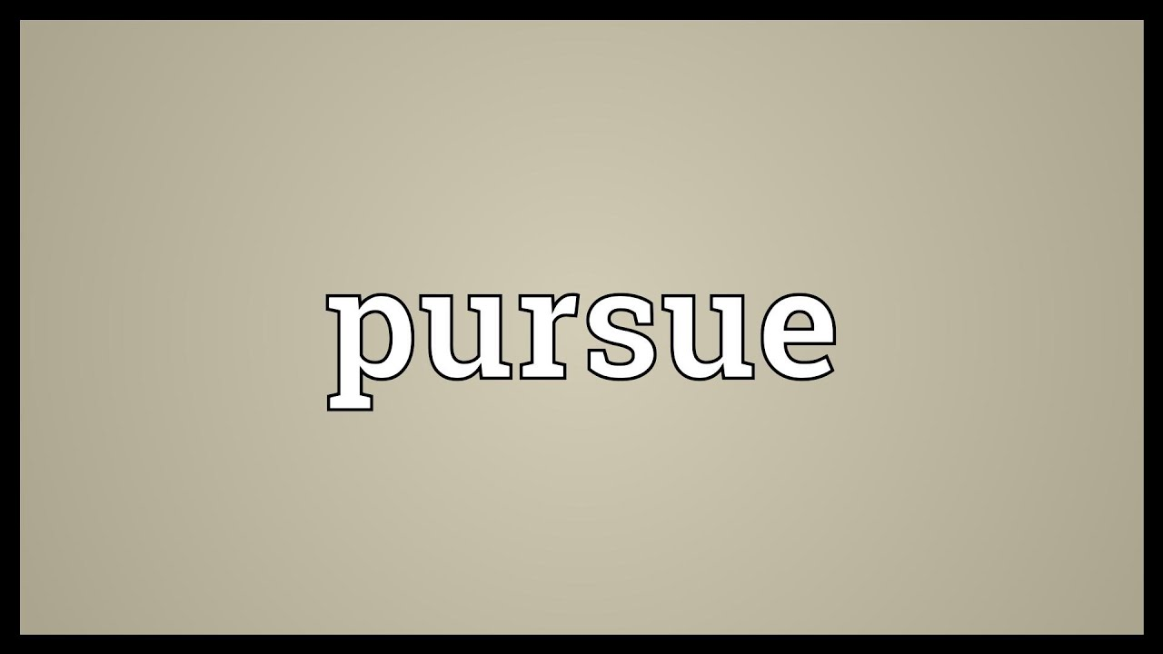 Image result for pursuing meaning in hindi