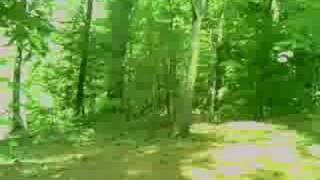 Little girl ghost in the woods! *REAL*
