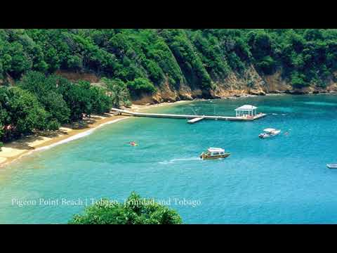 Pigeon Point Beach Tobago Trinidad And