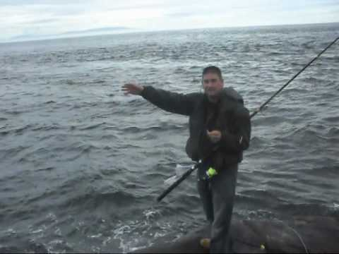 Rock Fishing Near Ballycastle North Ireland With Mal Big Pollock Mackerel Coalfish Conger Eel
