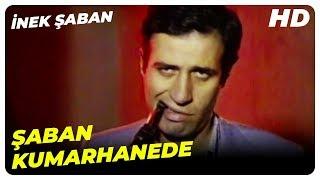 Şaban Kumarhanede | İnek Şaban Eski Türk Filmi