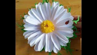 Как сделать открытку в форме цветка ромашки из бумаги своими руками. Подарки, поделки