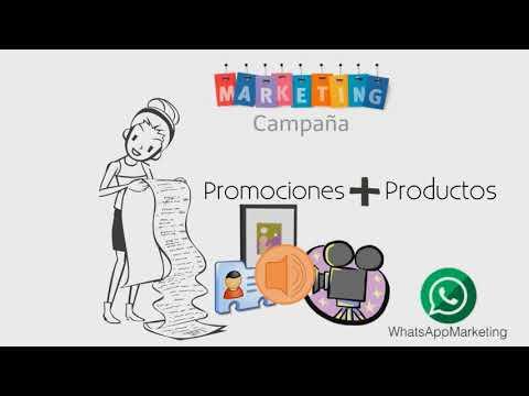 WHATSAPP MARKETING PLUS PANAMA