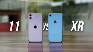 iPhone 11 vs iPhone XR: The Budget iPhone War!