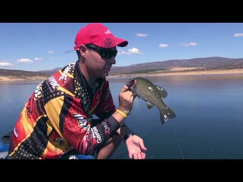 ASFN Bass - Fishing Slower And Deeper At Kwaggaskloof Dam Western Cape