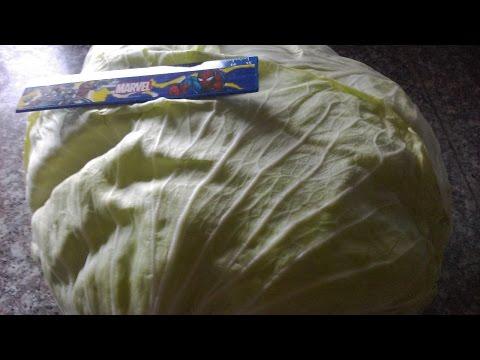 Обычные голубцы + хороший способ подготовки капустных