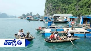 Một ngày ở làng chài Cái Bèo, Hải Phòng | VTC